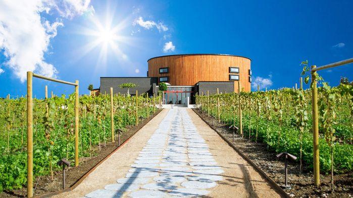 På Nordic Sea Winery kan vi följa vinproduktionen på nära håll, prova vinerna och äta en avsmakningsmeny med tillhörande drycker.