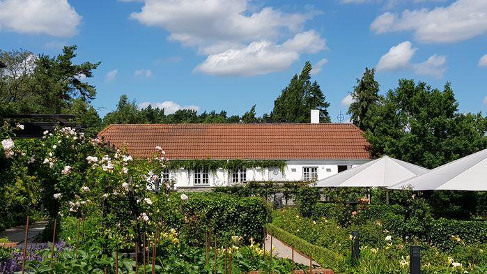 Den italienska renässansträdgården har mer än 300 rosenbuskar och där kan man koppla av i små halvmåneformade trädgårdsrum.